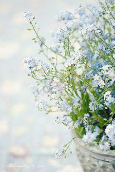 Forget-me-not -- pass out these seeds at your wedding reception for your guests to plant in honor of your special day :)