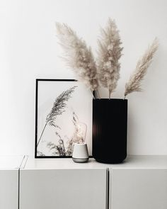 Humble Lights (@humble.lights) • Instagram photos and videos Vase, Lights, Photo And Video, Chameleon, Home Decor, Videos, Photos, Instagram, Decoration Home