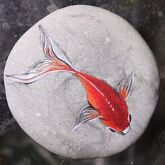 by AkihisaIwata on DeviantArt Koi Painting, Pebble Painting, Pebble Art, Stone Painting, Painted Rock Animals, Painted Rocks Craft, Hand Painted Rocks, Rock Painting Patterns, Rock Painting Ideas Easy