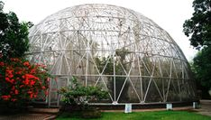 Kebun Binatang Taman Rimba Jambi, Pilihan Wisata Keluarga Murah