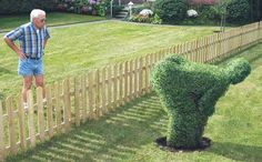 When I'm old and crazy I'm going to have topiary art everywhere