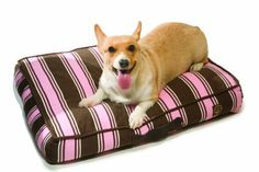 One for Pets Dog Bed Replacement Duvet Cover Large Pink ** You can get additional details at the image link.