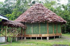 casas ecologicas en la selva - Buscar con Google