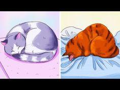 Deko Fliese süße fliegende Katze rosa  Katzenkind