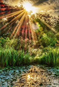Beautiful Landscape Photography, Scenic Photography, Beautiful Landscapes, Nature Photography, Amazing Sunsets, Amazing Nature, Beautiful Places, Beautiful Pictures, Unique Trees
