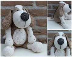 Dots & HOOK - Dog Boris