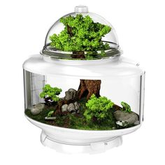 The BioBubble Terrarium is a groundbreaking habitat that introduces modular and expandable terrariums to the hobbyist. Combining advanced innovation with modern design, now you can take your terrarium