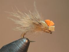 Eide's Hatching Caddis SBS | Washington Fly Fishing