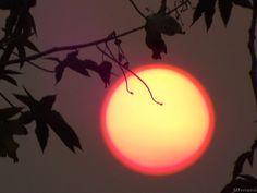 O sol com aro vermelho.