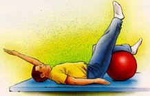 Low Back Pain Exercise Guide