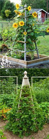 10 Easy DIY Garden Trellis Design Ideas For Vertical Growth Garden Fenced Vegetable Garden, Potager Garden, Diy Garden, Garden Planters, Garden Table, Vine Trellis, Garden Trellis, Bottle Garden, Garden Structures