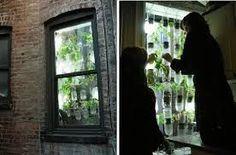Afbeeldingsresultaat voor moestuin op de vensterbank