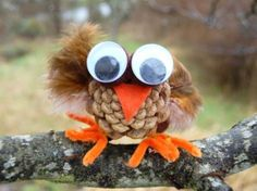 owl craft: Maybe this can be the activity if I can find pinecones.  Although we'll use school glue instead of hot glue.
