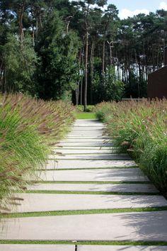 Landscape Pavers, Landscape Plans, Landscape Architecture, Landscape Design, Tropical Landscaping, Modern Landscaping, Front Yard Landscaping, Garden Paving, Garden Paths