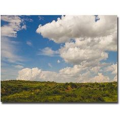 Trademark Fine Art Middle of Nowhere Canvas Wall Art by Ariane Moshayedi, Size: 16 x 24, Multicolor