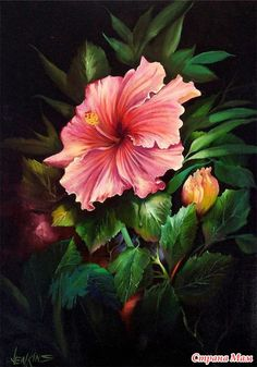 Tropical Pink Hibiscus by Gary Jenkins Art Floral, Watercolor Flowers, Watercolor Paintings, Flower Paintings, Gary Jenkins, Easy Landscape Paintings, Beginner Painting, Hibiscus Flowers, Pictures To Paint