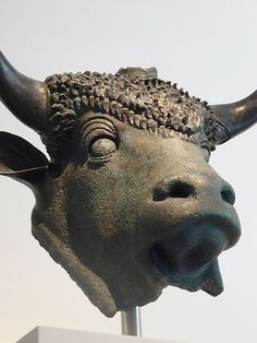 Bronze head of a sacred bull Roman 1st century CE from Octodurus in modern Switzerland founded by the emperor Claudius (1)