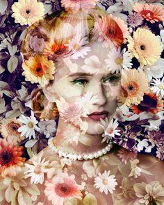 Early Flowering Narcissus - artist Valerie Belin