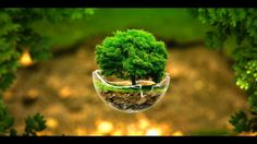 Abstract Tree Photo - Download Beautiful Hd Fantasy Cute Tree Background For Desktop