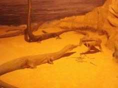 Daniela Scarel Art: Museo Civico di Storia Naturale (Milano) Part. II