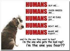 Love all puppies, but especially the bully breed <3