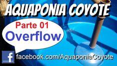 Aquaponia Fácil - Parte 01 - Overflow - Aquaponics System Overflow DIY -...
