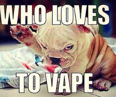 Welcome to thevapegeneration's vaping guide - The Vape Generation Vape Memes, Vape Accessories, Stop Smoke, Vape Shop, Vape Juice, Cloud, Smoking, Instagram, Random Humor