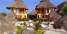 Villas Paraiso del Mar, Isla Holbox, Mexico place where you can see the whale shark (very docile)