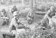 """""""Kaverilta lensi pää ja toinen itki"""" – suomalaisten hyökkäys osui suoraan päin panssareiden riviä Kuuterselässä 1944 - Suomi 100 - Ilta-Sanomat"""