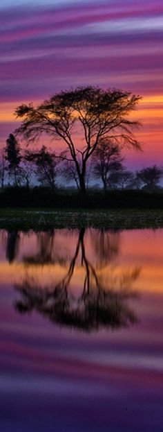 Lake sunset in Lahore, Pakistan • photo: Atif Saeed on Flickr