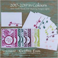 Carolina Evans - Stampin' Up! Demonstrator, Melbourne Australia: Crazy Crafters Product Purchase Premier Blog Hop - 2017-2019 In Colours