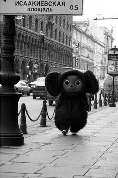 Cheburashka! He's a lot bigger than I imagined him to be...