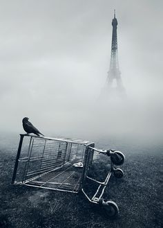 An amazing photo by Mikko Lagerstedt.
