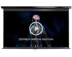 Centrální nervová soustava | datakabinet.cz Biology