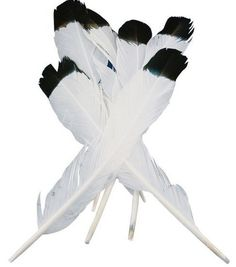 Simulated Eagle Feathers-4PK/White