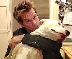 Celebrity Pit Bulls!  Dog: Lily / Guardian: Kevin Bacon During last year's 2012 Summer Olympics, actor Kevin Bacon was inspired to hold his very own diving competition with his pit bull, Lily. Perhaps after watching the adorable video of the synchronized doggy dive, the Olympic committee will consider adding human-canine tandem dives to their event categories! See the gold medal winning dive in this video filmed by none other than Bacon's wife, Kyra Sedgwick. What a happy (and talented)…
