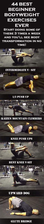 .44 Best (Beginner) Bodyweight Exercises Ever!