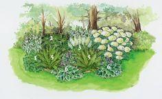 Ideen für schattige Plätze im Garten