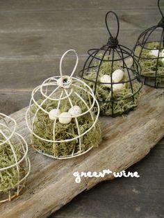 Image de leçons Monnaies cage à oiseaux: fil vert +