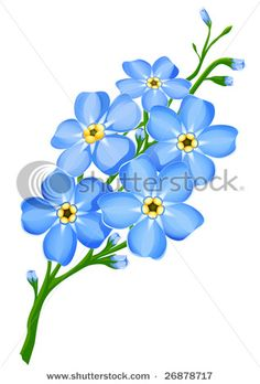 bunch of forget me not