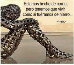What a perfect way to accept ignorance Freud Frases, Reminder Quotes, Sigmund Freud, Motivational Phrases, Gladiator Sandals, Carne, Coaching, Kaizen, Google