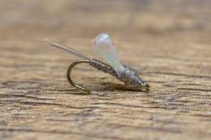 About Tailwater Junkie - Meet Forrest Dorsey Fly Fishing Books, Fly Fishing Line, Fishing Tips, Blue Winged Olive, Mayfly, Fly Tying Patterns, Rod And Reel, Black Sparkle, Inventions