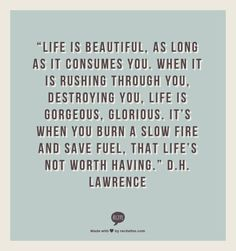 """""""Life is beautiful, as long as it consumes you. When it is rushing through you, destroying you, life is gorgeous, glorious. It's when you burn a slow fire and save fuel, that life's not worth having.""""  D.H. Lawrence"""