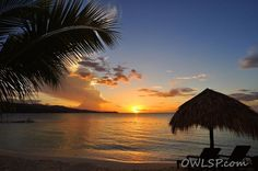 Wow! What an incredible #sunset on the #beach at #SecretsWildOrchid! #jamaica
