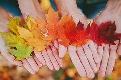 october wedding with bride and groom rings October Wedding, Autumn Wedding, Our Wedding, Dream Wedding, Wedding Ideas, Wedding Colors, Wedding Stuff, Wedding 2017, Burgundy Wedding