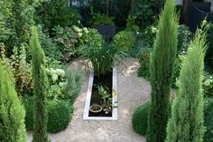 Terrasse en rez de jardin à Paris 16