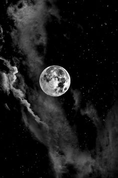 Dark forest, glow of the lake, an eternal dance of death Dark Wallpaper Iphone, Black Wallpaper, Galaxy Wallpaper, Wallpaper Backgrounds, Black And White Photo Wall, Black And White Pictures, Moon Pictures, Moon Photography, Dark Moon