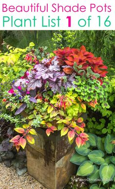 Create beautiful shade garden pots with easy shade loving plants & flowers. 16 colorful mixed container plant lists & great design ideas for shade gardens! – A Piece of Rainbow planters garden pots 16 Colorful Shade Garden Pots & Plant Lists Shade Plants Container, Shade Garden Plants, Container Gardening Vegetables, Container Flowers, Flower Planters, Garden Pots, Flower Pots, Potted Plants, Succulent Containers