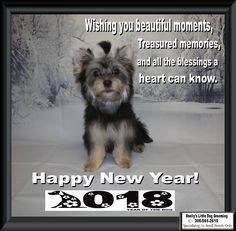 ❄️ Wishing My clients a Very Happy New Year & All The Best in ☃️ Small Breed, Little Dogs, Beautiful Moments, Dog Grooming, Happy New Year, Animals, Art, Little Puppies, Art Background