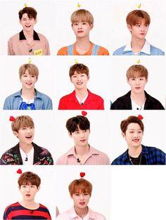 Wanna One - All the K-pop Jinyoung, K Pop, Weekly Idol, You Are My World, Chaeyoung Twice, Guan Lin, Fandom, Produce 101 Season 2, Lee Daehwi